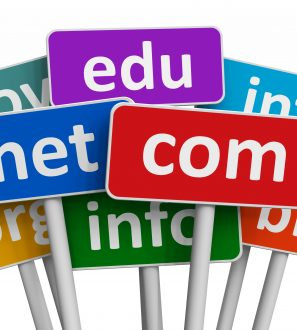 Top Level Domain Names