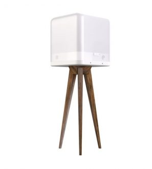 Lucis Portable Wireless Lighting Combo with Lamp and Wooden Stand