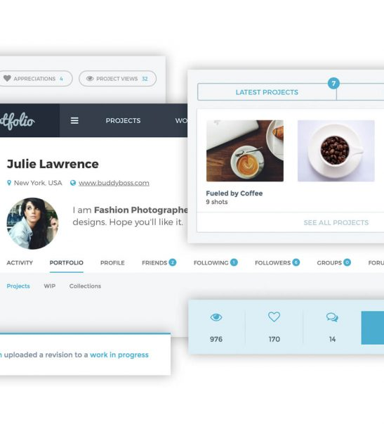 Launch a state of the art Social Network for Creatives