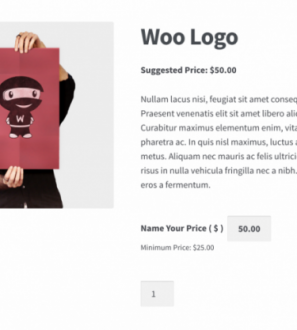 WooCommerce Name Your Price Plugin